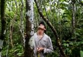 Midiendo árboles de bolaina en la Amazonia peruana. Ernesto Benavides/CIFOR