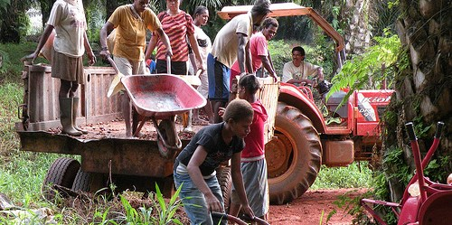 Karena kurangnya pengalaman mengenai sektor kelapa sawit dan konflik terhadap hak atas lahan, penduduk lokal Papua sepertinya tidak akan mendapat keuntungan dari kesempatan kerja seperti yang diproyeksikan pemerintah, mengingat akan meningkatnya para pekerja migran. Photo @CIFOR