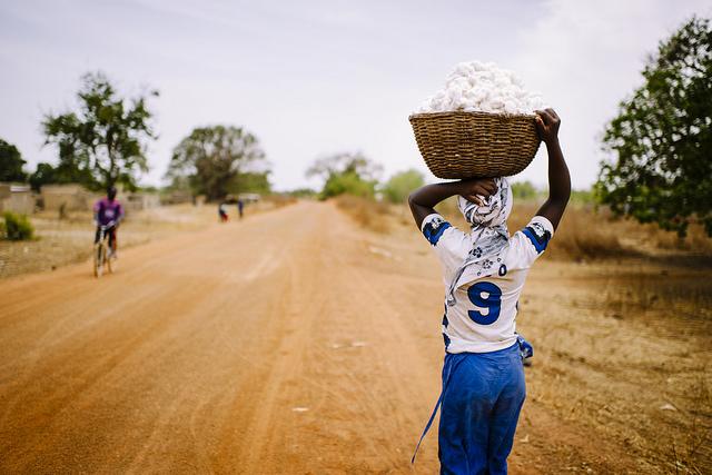Farmland Africa Investment
