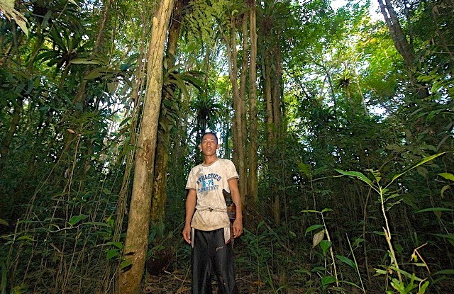 Research finds many smallholders would like to reforest, but they say they lack the knowledge and the resources to do so.