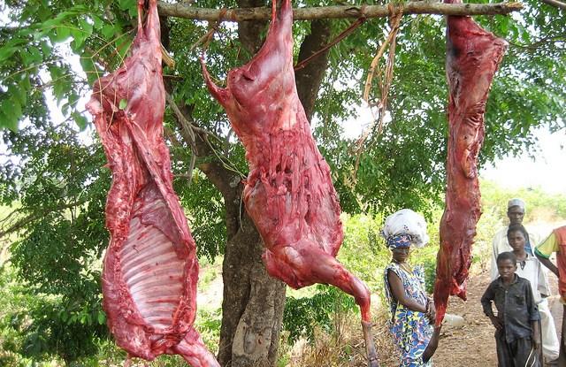 Skinned antelope for sale in Guinea, Africa. Terry Sunderland/CIFOR photo