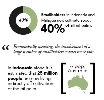 Oil palm: A visual story
