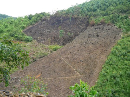 Cleared hillside in China, where the government has been trying to reforest sloping lands to prevent erosion. Nick Hogarth/CIFOR photo