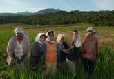 Women farmers in East Nusa Tenggara province, Indonesia.  Aulia Erlangga/CIFOR photo