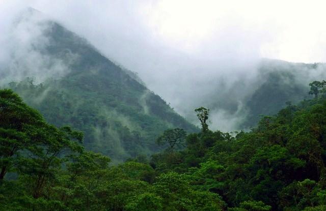"""Alto Mayo, Peru,di wilayah Barat Amazon—satu dari tujuh """"bentang alam penjaga"""" dimonitor dalam rentang waku oleh para ilmuwan.Bruno Locatelli/CIFOR photo"""