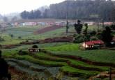 Agricutura multicultivo y  paisaje forestal en la Reserva de la Biosfera de Nilgiri, Tamil Nadu, India. Se están realizando investigaciones para determinar si es qué y cómo, el enfoque de paisajes se aplica en la vida real. Foto cortesía Deepak Dhyani