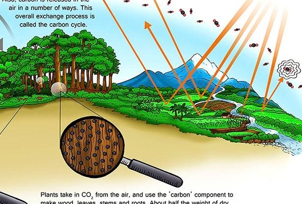 Cuplikan dari sebuah poster yang dirancang untuk mengajar tentang karbon dan perubahan iklim.