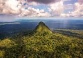 Las colinas boscosas de la Sierra del Divisor, en Ucayali, Perú. Fotografía cortesía de Diego Pérez.