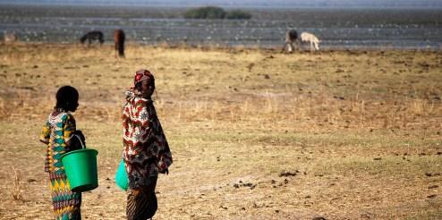 Africa, 2008.