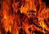 Una nueva investigación sobre las causas de los incendios en la Amazonía occidental brinda luces sobre la gestión de incendios, la adaptación y la mitigación de los daños.