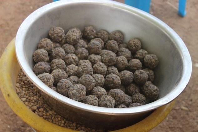 086 Kalembouli soumbala & nere seeds