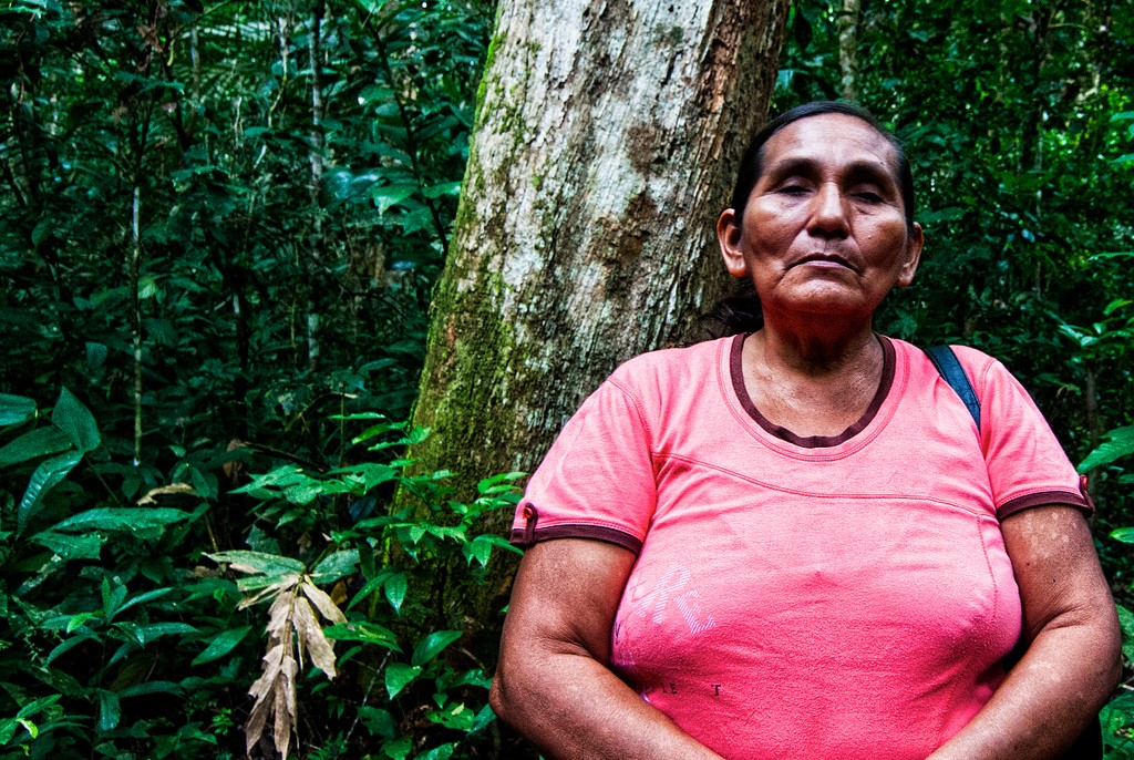 Promise and perils: Recognizing indigenous forest territories