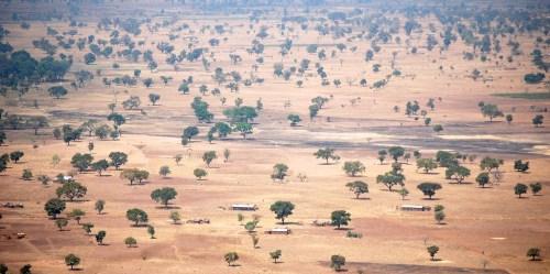 Paysage présentant une forêt sèche au Burkina Faso, Afrique de l'Ouest. Daniel Tiveau/CIFOR
