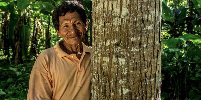 Discutiendo sobre la restauración forestal, expertos coinciden en la importancia de la visión local.