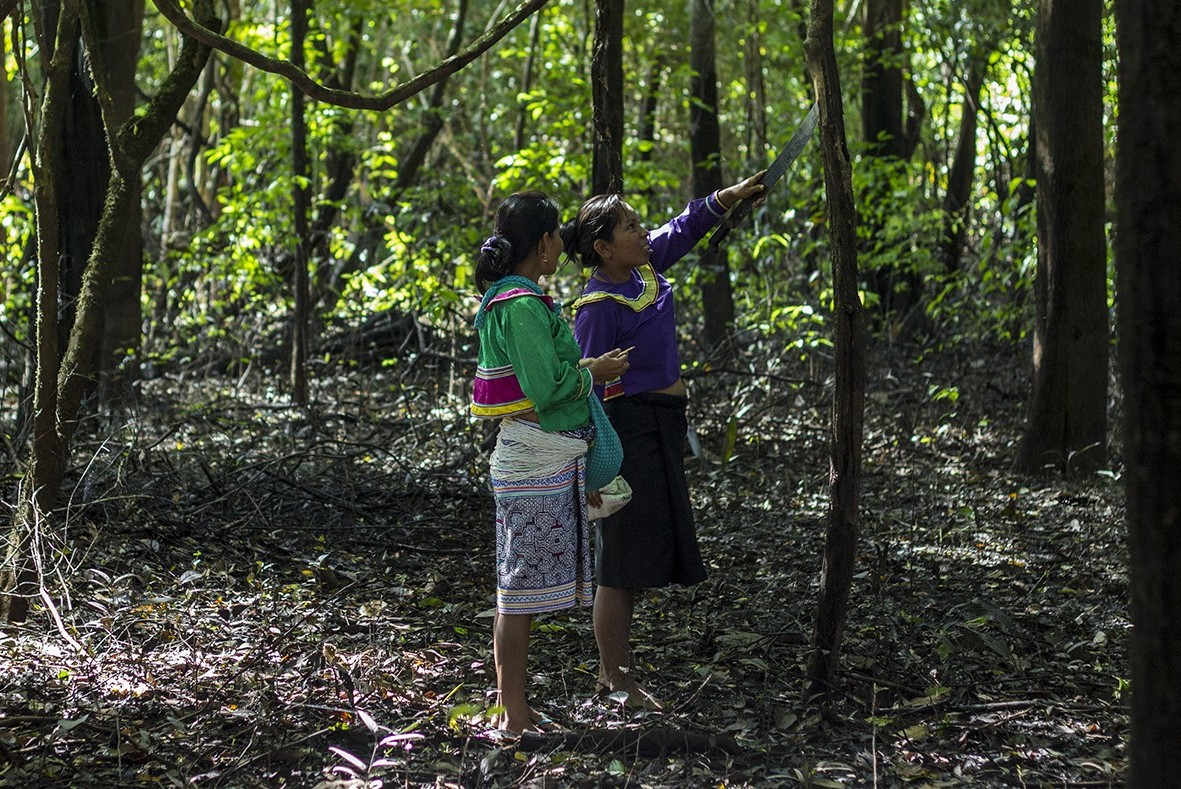 Science sisters of the Amazon