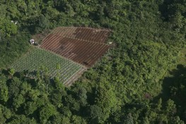 Aerial view of the landscape around Halimun Salak National Park in West Java, Indonesia. Swidden farming dominates in this region, but the practice of agroforestry is catching on.  Kate Evans  /CIFOR