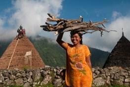 Mengumpulkan kayu bakar untuk memasak, Waerebo, NTT. Perempuan berperan penting dalam kelestarian hutan.