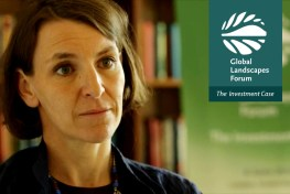 Andrea Ledward of DFID and the Green Climate Fund on the state of climate finance.