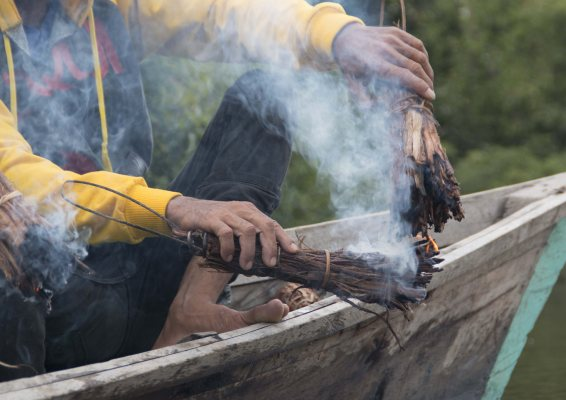 Locals burn wood in preparation for honey harvesting in Kapuas Hulu, Kalimantan.