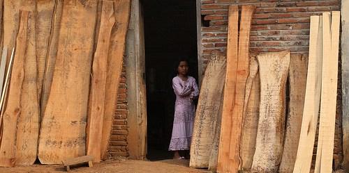 Brexit bisa berdampak pada menurunnya investasi industri kayu Indonesia