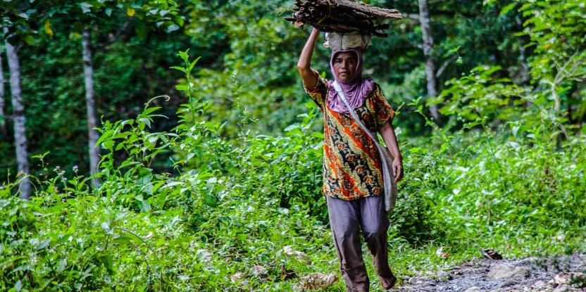 A woman in Aceh carries firewood from the forest for cooking. Forest landscape restoration considers the diverse values of forests, including to support livelihoods. CIFOR/Boy Haqi