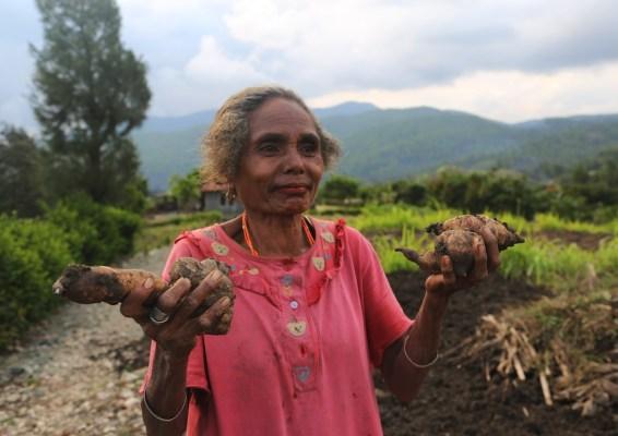 Seorang perempuan bertani di Nusa Tenggara Timur. Kredit foto: CIFOR