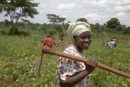 Farmer Nejjemba Teopista working in a communal garden at Kangulumira, Uganda.