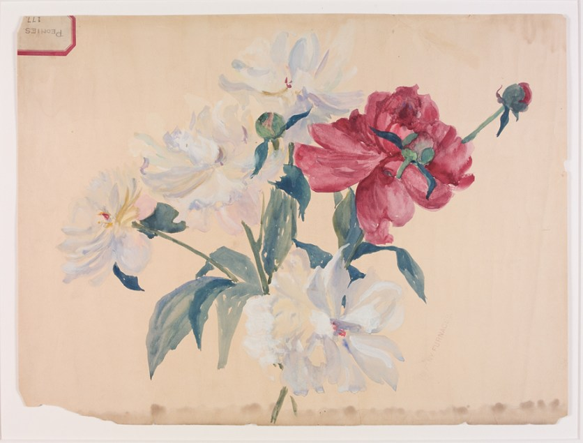 Peonies design drawing for Tiffany Furnaces by Alice C. Gouvy and Lillian A. Palmié
