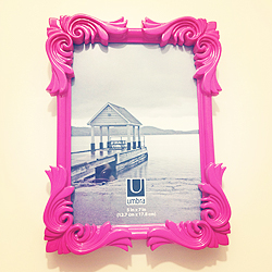 Pink Umbra Picture Frame from Ross