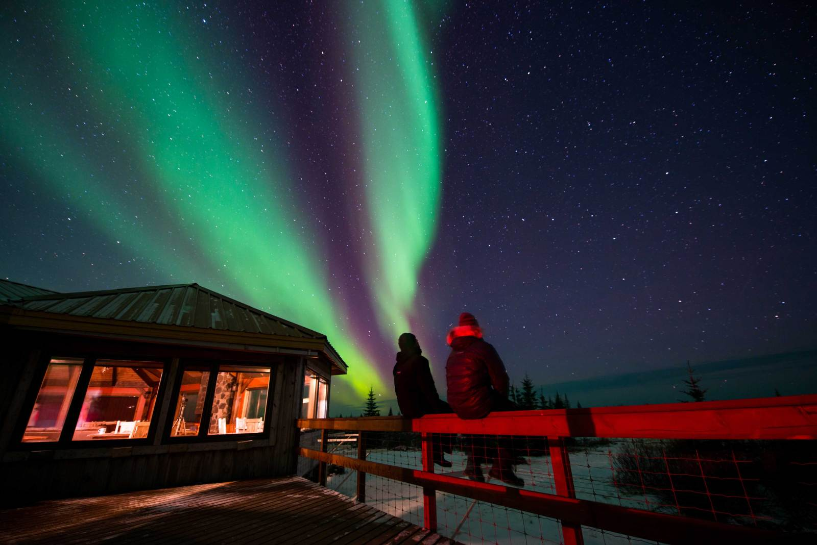 Directors of Toughness looking up at the northern lights in Manitoba Canada