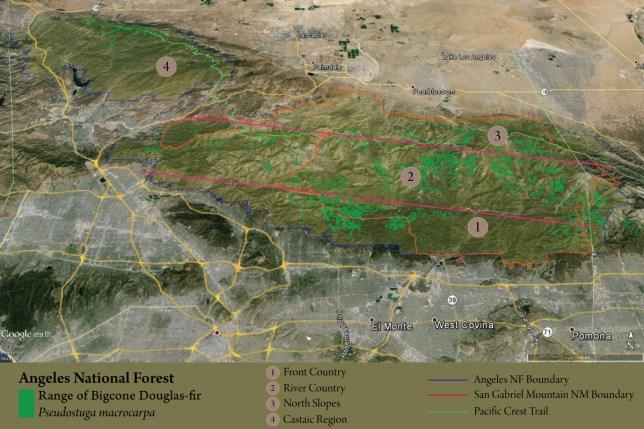 map-PSMA