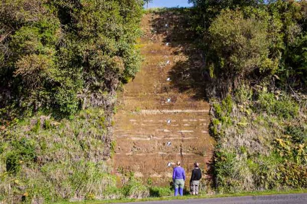 Cardiff road cutting South Taranaki