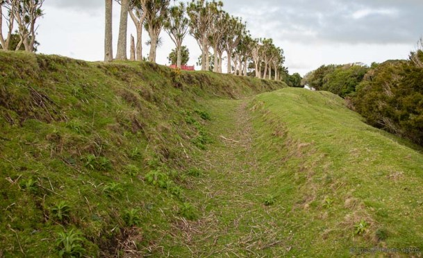 Turuturu Mokai Historic Reserve
