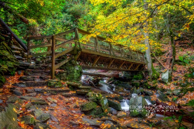 Mingo Falls Foot Bridge Autumn