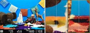 Nikon D810 Split Screen Display Zoom LCD monitor screen Live View