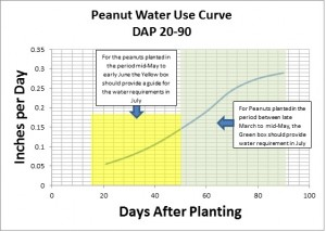 Peanut Water Use