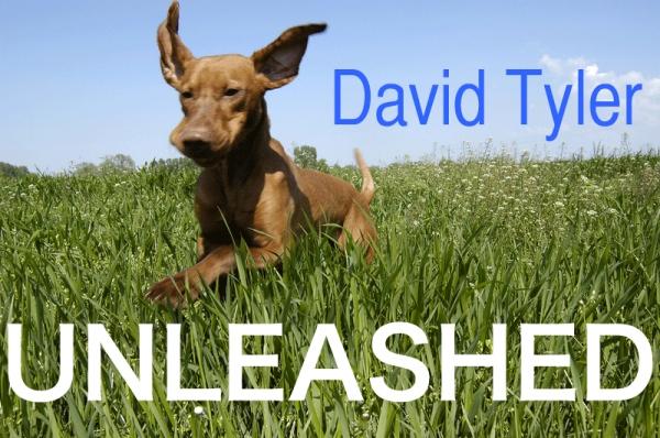 David Tyler Unleashed logo