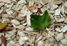 acolchados-plantaciones