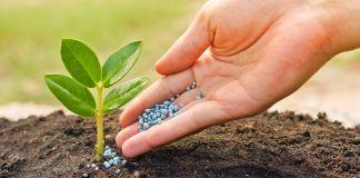 Consejos para encontrar el fertilizante apropiado - Los fertilizantes