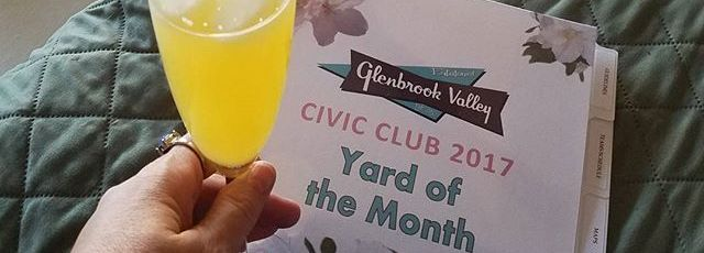 Yard-of-the-Month-judging-day-is-never-boring-or-dry-yardofthemonth-glenbrookvalley-mimosa-historich
