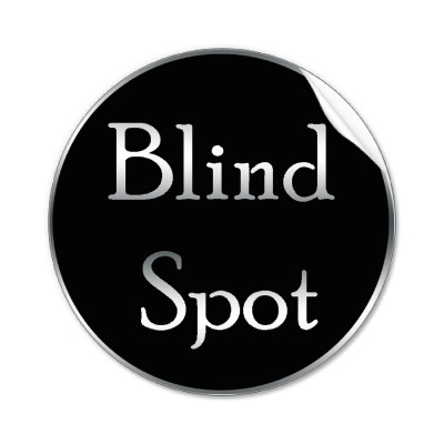 We All Have Blind Spots