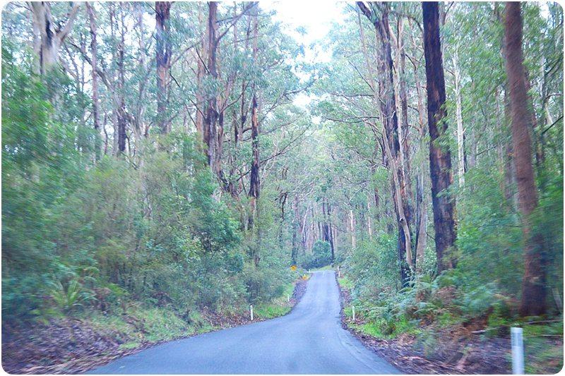 Site de rencontre australie