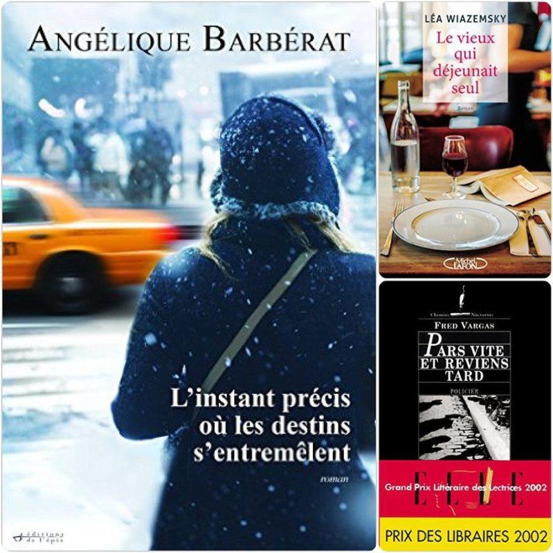 avis-lecture-romans-blog-2