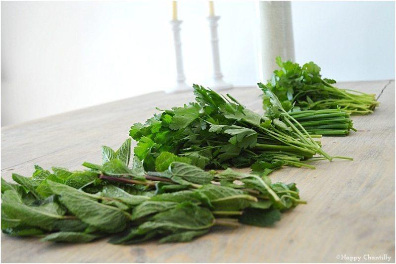 les-herbes-aromatiques-2