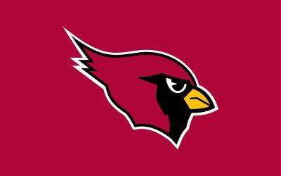 11 HD Arizona Cardinals Wallpapers