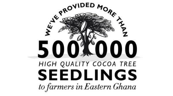 Cocoa Chocolate Infographic
