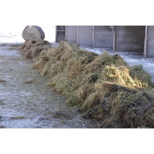 Medium Crop Of Hay Vs Straw