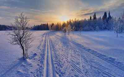 Cross-country skiing in Finland: An endangered tradition?