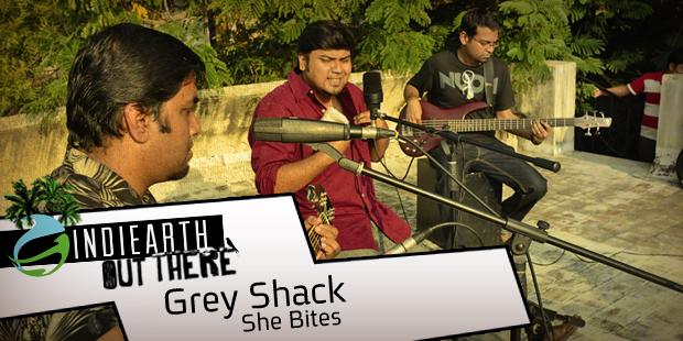 GreyShack_SheBites-Blog-banner