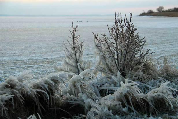 Eiszeit auf Hiddensee am 03.01.2016